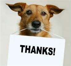 Dog Holding a Thanks Sign